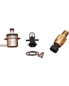 ELECTRONIC FUEL-INJECTION COMPONENTS