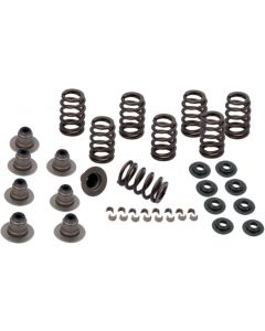 SPRING KIT .600 LIFT M8 MODELS
